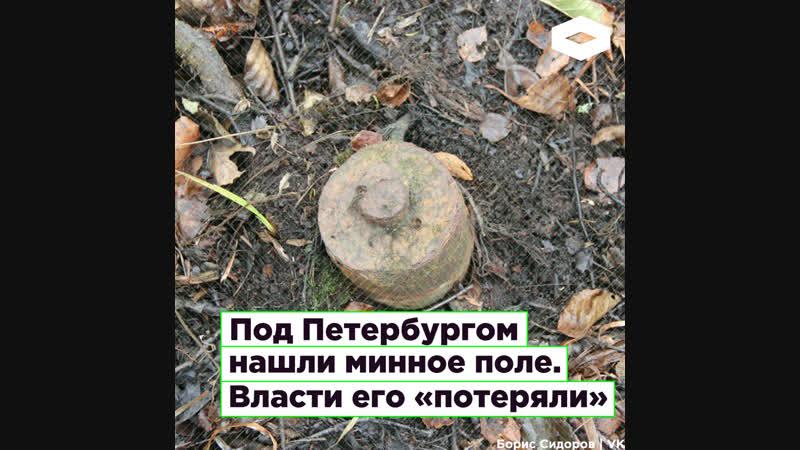 Минное поле в Ленинградской области стояло нетронутым с 1941 года   ROMB