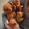 Мишки Тедди и творчество. Добрые медведики.