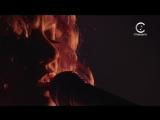 Vanessa Paradis - Joe Le Taxi (live