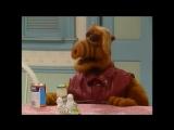Alf Quote Season 2   Episode 26_Взаимно