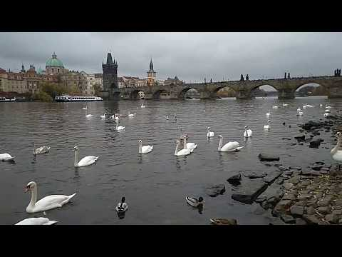 Moldau in Prague / Prag / Praga