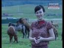В Башкирии лошади занялись сексом прямо во время телесъемок.