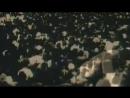 ЕВГЕНИЙ БЕЛОУСОВ - ДЕВОЧКА МОЯ СИНЕГЛАЗАЯ(YEVGENIY BELOUSOV - A GIRL MY BLUE-EYED)