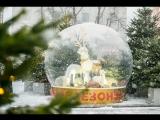 Прямая трансляция с площадок фестиваля «Путешествие в Рождество»