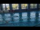 CISM по плаванию День первый 1500 м Freestyle