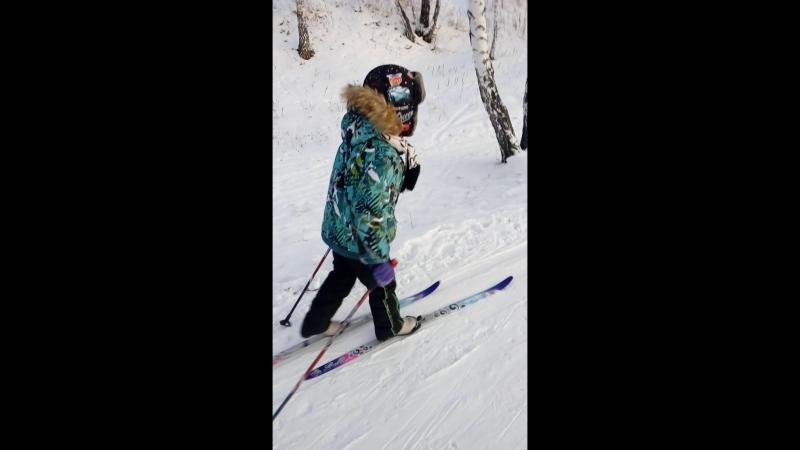 лыжиборки