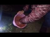 Вик#тор на рыба#лке как н#адо лов#ить кар#ася пой#мал на килогра#мм под ут#ро но#чь бы#ла без покл#евок кар#ась то#лько на#чал к