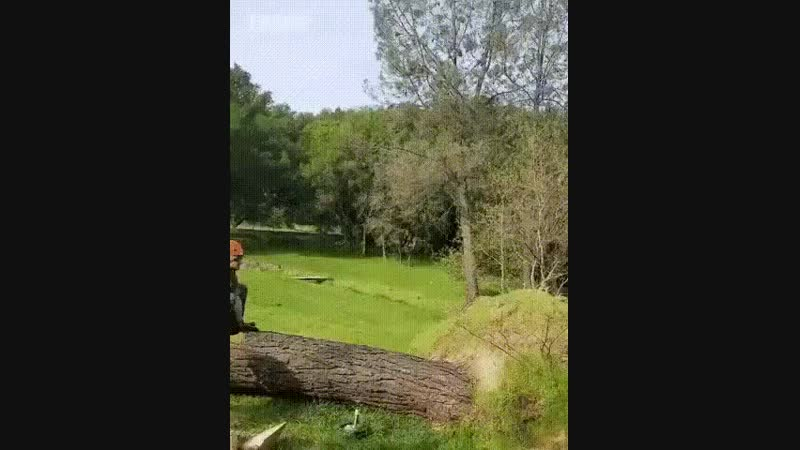 Лесорубы развлекаются