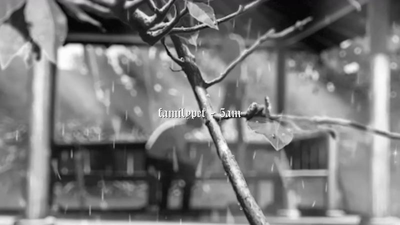 Familypet - 5AM