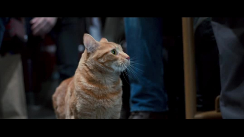 Уличный кот по кличке Боб | A Street Cat Named Bob (00:38:45 - 00:40:31)