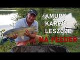 Amury, Karpie i Leszcze na Method Feeder - Feeder Bait Mix Epidemia