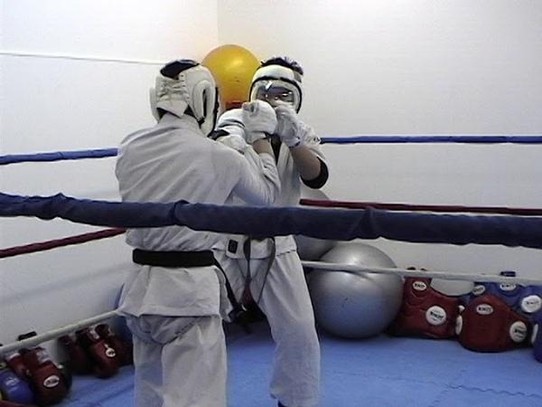 Kudo training