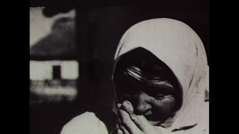 20. Великая Отечественная война – Неизвестный Солдат