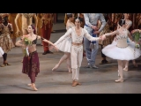 Баядерка La Bayadere, Mariinsky Theatre 10.06.2016/ Diana Vishneva, Viktoria Tereshkina, KiMin Kim and Timur Askerov