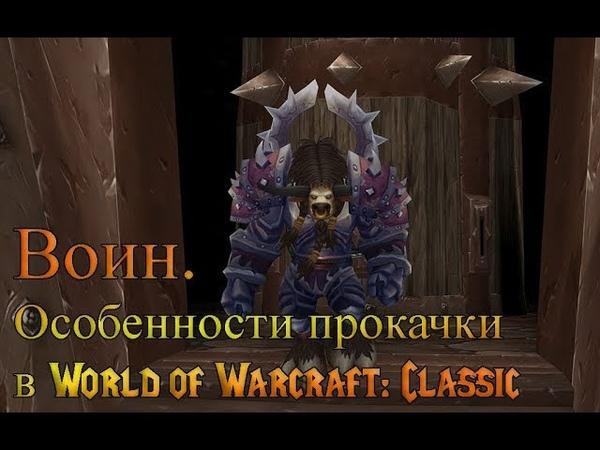 Воин. Особенности прокачки в World of Warcraft Classic