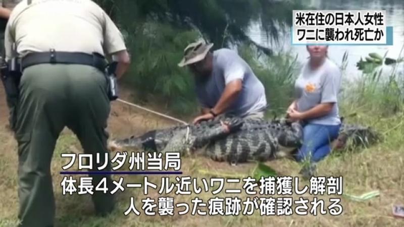 ワニに襲われ日本人女性死亡か 湖近くを散歩中 米フロリダ州 NHKニュース