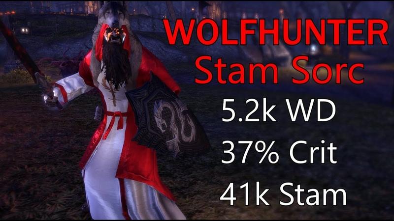 ESO - Varxents SummersetWolfhunter Stam Sorc 1vX 2h Build