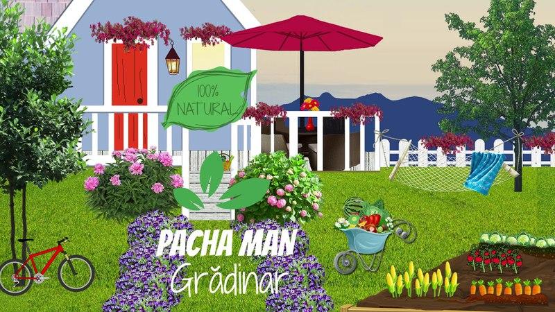 Pacha Man - Gradinar (Official Audio)