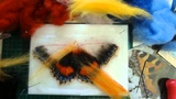 Needle Felting a Small Tortoiseshell Butterfly by Sophie Buckley (Making Needle Felted Animals)