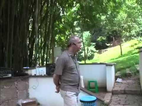 Física Quântica e Espiritualidade Laércio B Fonseca