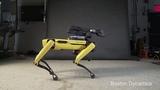 Dancing robot (Aaron Smith - Dancin)