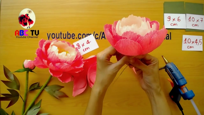 ABC TV _ How To Make Coral Charm Peony Paper Flower From Crepe Paper - Craft Tutorial