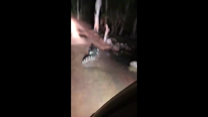 Крокодил - дпсник заблокировал дорогу и требует документы
