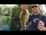 Pond fishing for bluegill and white bass with worms. How to catch bluegill