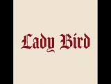 Промо-материал к фильму «Леди Бёрд»