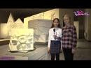 Выставка Лев сова и мыльный камень