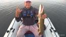 Жарким летом ловлю щуку на воблеры на каждой рыбалке в абсолютно разных местах