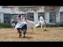 День доброй лошади. Русский народный танец.