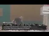 В Тюмени сняли на видео как работник магазина собирает хлеб с земли