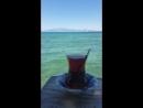Summer Tea)