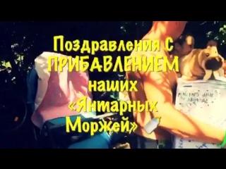 В «Янтарных Моржах» прибавление!
