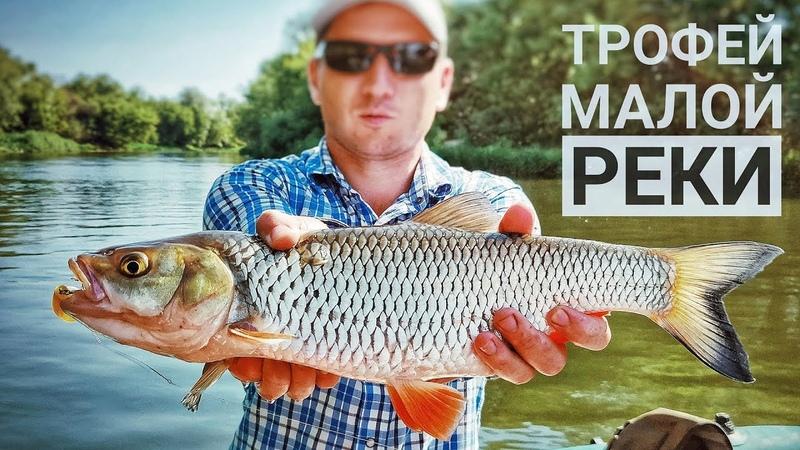 Два заброса, два голавля. Рыбалка на малой реке сплавом.