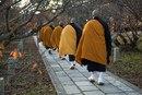 В начале моей практики дзадзэн я очень хотел получить сатори и уходил в горы…
