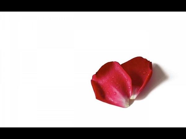 Ж.Бизе - Р.Щедрин Кармен-сюита 8. Болеро. G.Bizet - R.Shchedrin Carmen - Suite