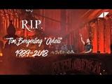 Avicii - Wake Me Up Live Tomorrowland 2015