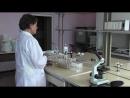 Кто мутит череповецкую воду ученые требуют раскрыть правду о дезавидной отраве в водопроводе