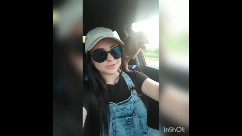 InShot_20180527_195805001.mp4