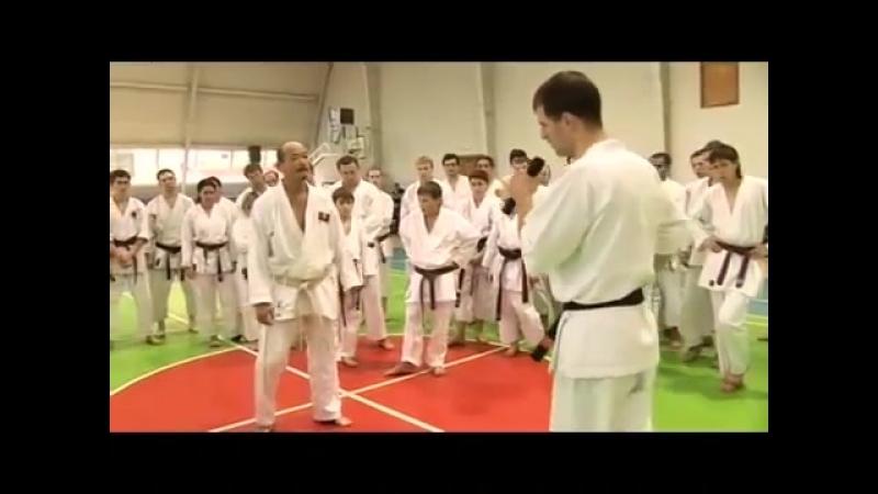 Karate Seiji Nishimura. Seminar in Moscow 2008 (5/6)