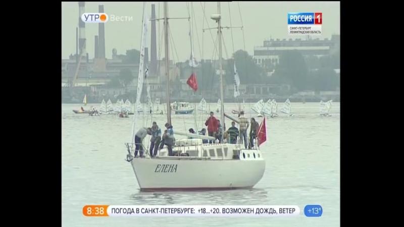 Вести - Санкт-Петербург.Утро от 22.06.2018 vestispb вестиспб vesti spbnews