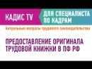 Предоставление оригинала трудовой книжки в ПФ РФ
