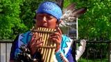 Песня о борьбе за свободу индейцев. Pakari. Movimiento indigena.