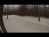 Лыжные крабы