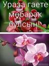 Закир Фаттахов-Мухаметов фото #21