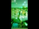 Like_6611048383340335447.mp4