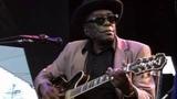 John Lee Hooker - Hobo Blues - 10101992 - Shoreline Amphitheatre (Official)