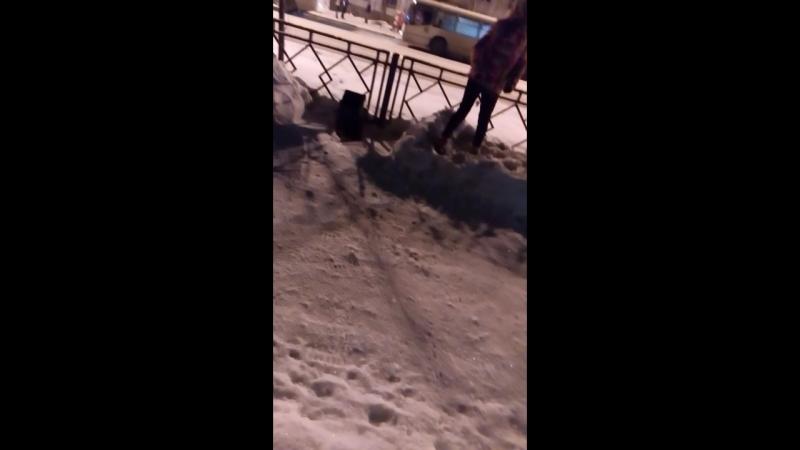 Страшная травма ноги Вадима Дужнова в бою за Сталинград